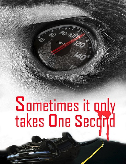 Speeding Kills Road Safety